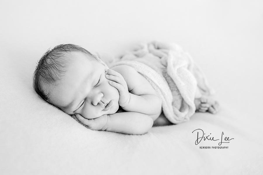 auckland newborn photographer